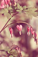 Love Nature by doyles-slave