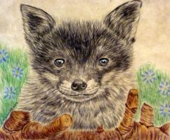 fox cub no to fox hunting by shirls-art