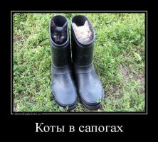 Cats in Boots by Wowches