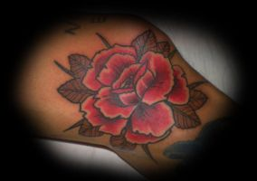 knee side rose by rozeink