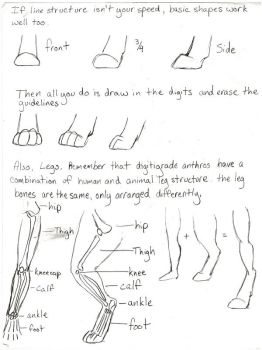 Paws and Legs Tutorial 2 by AngelTigress03