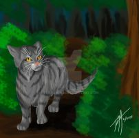Graystripe by Flamewing8