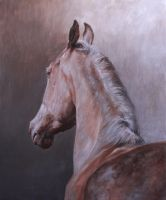 Arabian Horse Oil Painting by MeWannaLearn