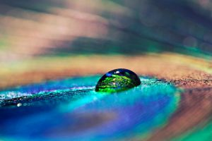 Droplet III by markie2k