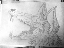 Wolf skull by 13lolly