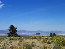 Mono Lake May 2012 by Synaptica