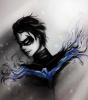 Nightwing by CharlieRobin