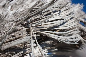 Driftwood close-up by KariLouMc
