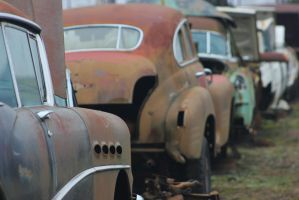Buick's junk row by finhead4ever