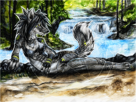 CM .:WaterFall:. by WhiteSpiritWolf