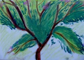 Tree by MWaters