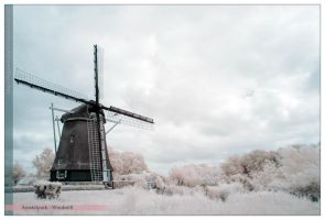 Amstelpark - Windmill by NightSheep