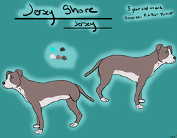 ODK's Jersey Shore by NAMEY-D0G