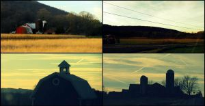 America's Country's Country by pomhappymydog