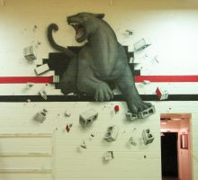 Panther wall complete by itva