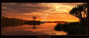 Everglades by 00AngelicDevil00