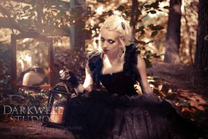 A Whisper Upon the Wind I- Longing by MidnightStarr3791