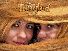 Tangled by Imagination-HB