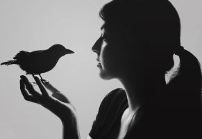 Velvet Whispers of Nevermore by KatieLindPhotography