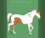 Skibaar Import 23 by horsy1050