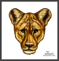 The Lioness by Faejala