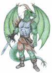 Dragon Warrior by Ridira