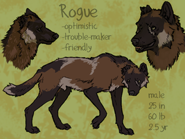 Refsheet: Rogue by Pagerda