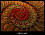 Peacock Feathered Spiral by AmorinaAshton