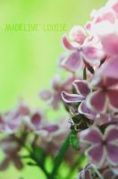 Lavender and Lime by MaddLouise