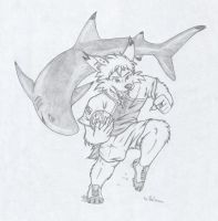 Rugby: RSA Sharks by The-Fall-of-Snow