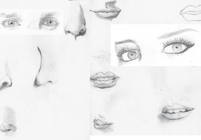 Facial Features by TheSimpsonsFanGirl