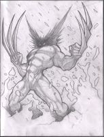 wolverine front sketch by VASS-comics