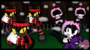 Contest Prize: Ninja Training 3: Shadow Clones by CCgonzo12