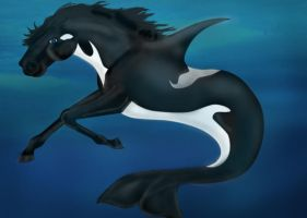 Artic Hippocampus by Artisinmy by ArtisinmyHeart