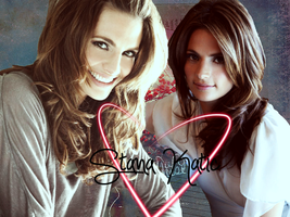 Stana Katic banner by slaveformusic