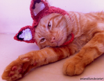 Crochet fox hat for cats :D by AmiAmaLilium