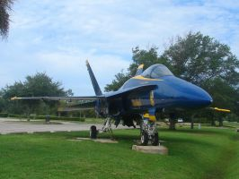 Blue Angels Parking 4 by FantasyStock