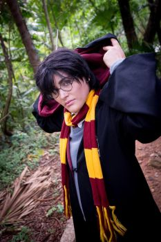 Potter by pandorynha