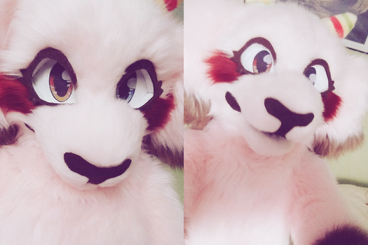fursuit selfies by pinuh