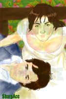 Pride and Prejudice by SharpAce