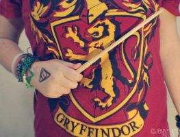 Gryffindor by Hurricane96