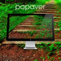 PAPAVER by 99xpress
