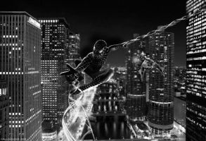 Spiderman LP by Wallbanger6