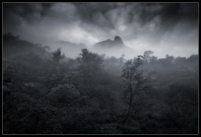 Misty Mountain by Basement127