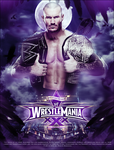 Wrestlemania XXX by 95100wwe