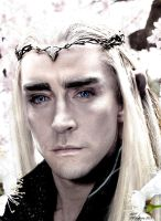 thranduil wallpaper by betka - photo #22
