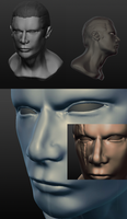 Mortal Kombat Subzero 3d Head by Cosmic-man