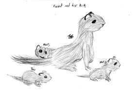 Ferret and her Kits - Realism Practice by Strudel--Cutie4427