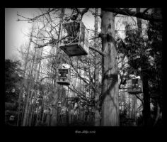 birdcages in the woods by majesticnocturne