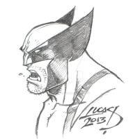 Wolverine SKETCH 2013 by LucasAckerman